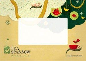 ts-gift-card1-300x215